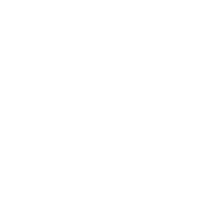 logo academy of desseointegration