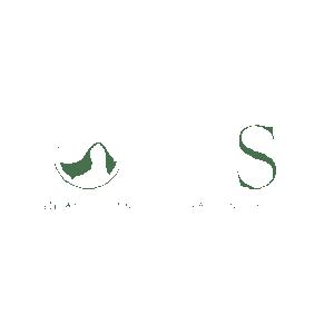 logo AES